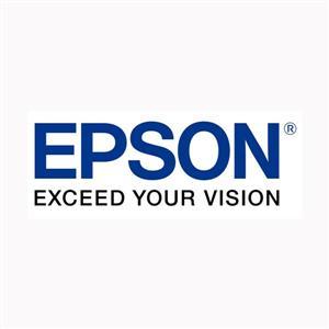 EPSON C13T157690 淡靓紅色墨水匣