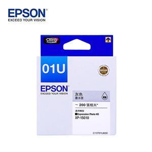 EPSON C13T01U650 灰色墨水匣